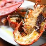 active_Omar shrimp